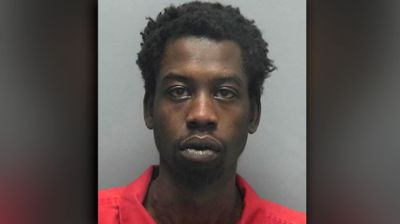Florida man stabs dog to death 'because it always took girlfriend's side' - reports