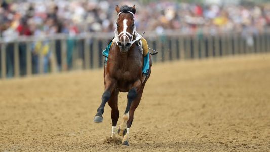Preakness Stakes 2019: Bodexpress runs entire race without jockey