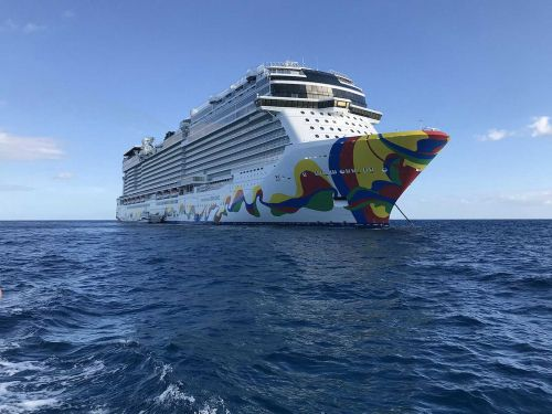 This major cruise company may avoid Florida if the state doesn't permit COVID-19 vaccination checks, CEO says