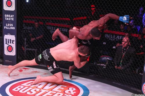 Check out the video highlight reel of Bellator's Brock Lesnar protege, Logan Storley