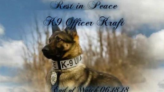 Community stunned by death of Batavia's beloved K-9