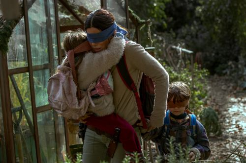 Netflix won't cut real-life 'Bird Box' scene despite outcry