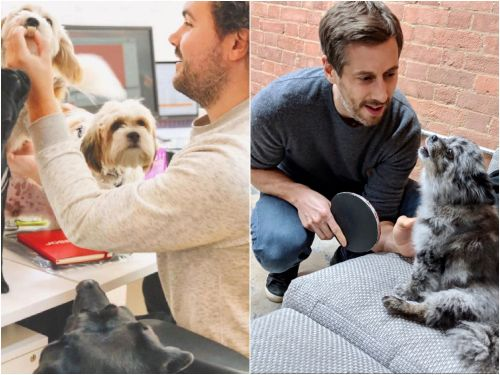 Pet health startup Front of the Pack just raised $3.5 million in seed funding from the likes of Stride VC and NEON