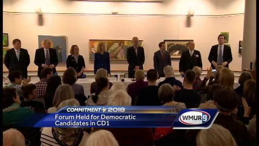 Democratic candidates for first congressional district meet at forum