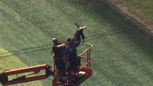 WATCH: Hawk rescued from netting at Top Golf in Orlando