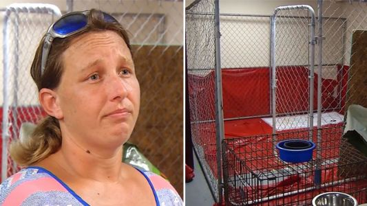 Woman may face charges for sheltering pets during Hurricane Florence