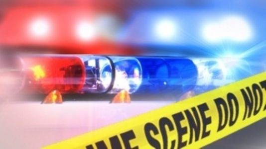 Deputies look for two men who assaulted resident during home invasion