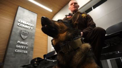 Striker Strikes Again! Chisago Co. K-9 Chases Down 2nd Suspect In 2 Weeks