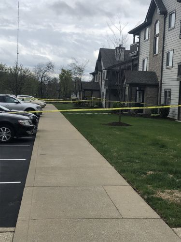 Grandmother found shot to death inside Northeast Jefferson County home