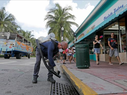 A mosquito virus that had never been identified in humans was found in a Florida boy - here's what to know about the Keystone virus