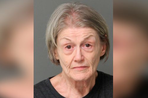 Woman plotted to kill her mother for online love scam: police