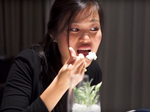 What it's like to eat at the best restaurant in the world