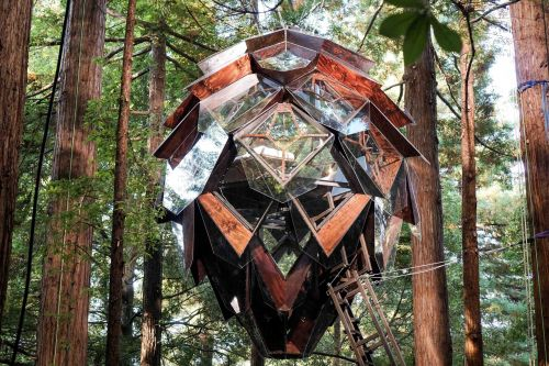 "This pinecone-shaped treehouse rents for just $350 a night. People are calling it ""utterly magical."""