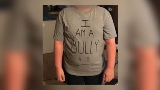 'I don't coddle my children': Mom makes son wear 'I am a bully' shirt