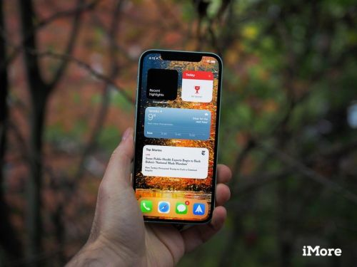IPhone 12 mini demand squashed by pandemic, 12 Pro thrives