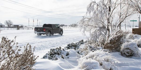 Texas energy board members resign in wake of catastrophic deep-freeze power grid failure