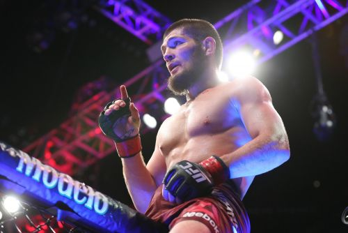 3 top fighters fully expect Khabib Nurmagomedov to 'kill' Conor McGregor when they trade blows at UFC 229