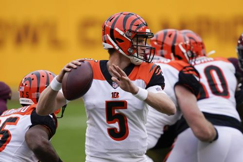 2 Bengals coaches to miss Sunday's game due to COVID-19