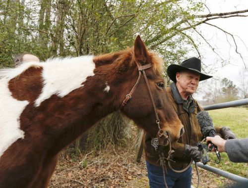 The Latest: Roy Moore rides to poll on horseback, as in past