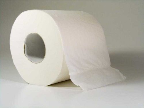 Family members get into a fight when one accuses the other of hiding toilet paper