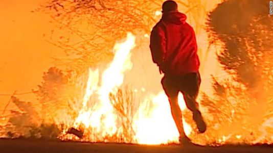 Man rescues rabbit from wildfire on side of Calif. highway