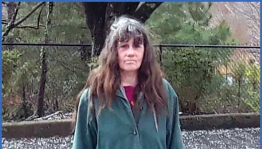 Deputies ask for help finding Greenville County woman missing since Tuesday