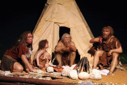 Sex with humans killed Neanderthals, study claims