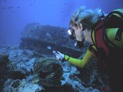 First Stop for Scuba Divers: the Dentist's Office?