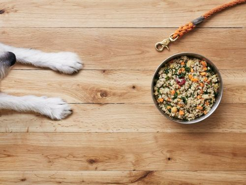 I tested The Farmer's Dog, a meal plan service that sends your dog fresh food for as little as $3 a day - here's what it's like