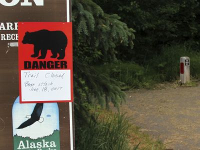 'It did not go as planned': Cyclist mauled by bear in Alaska saved by friend