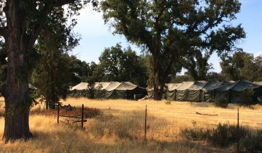Cause of Fort Hunter Liggett accident released after 22 soldiers injured