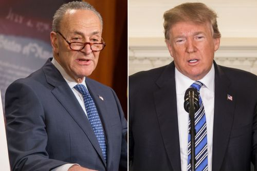 Schumer to Trump: Don't cut money for gun background checks