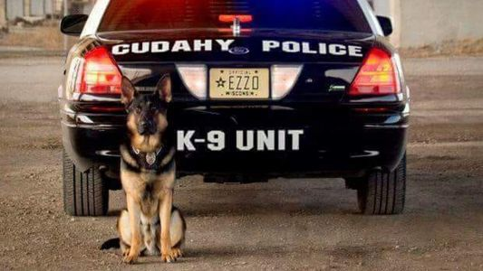 Cudahy announces death of retired K-9 Ezzo