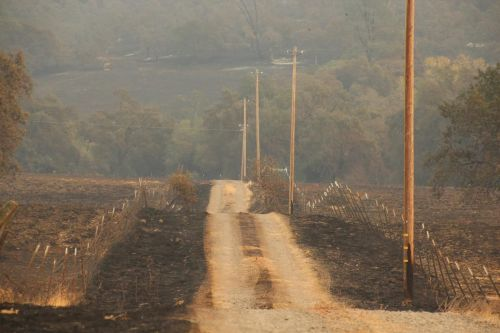 'Urban firestorm': Report details firefighters' close calls in Paradise