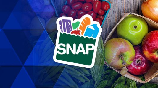 West Virginia House OKs work requirement for food stamps