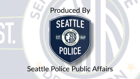 Seattle police release video of deadly shooting of suspected car prowler