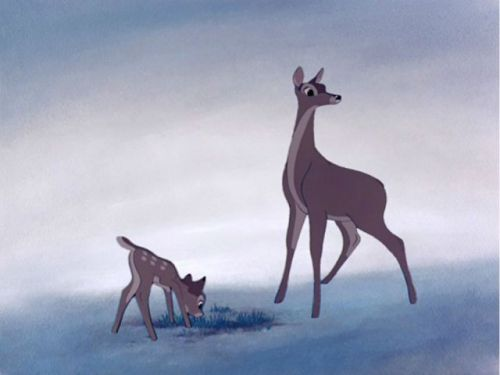 A poacher who killed hundreds of deer was sentenced to repeatedly watch 'Bambi'