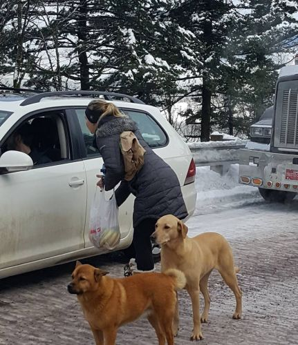 'I think I we were there for 18 hours': State troopers, 'mystery couple' hand out food to stranded drivers during ice storm