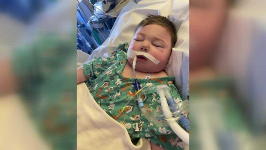 3-year-old Vinton boy in need of a kidney donation