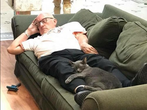 A man who volunteers every day at his local animal shelter is going viral for taking naps with the special needs cats - and the photos will melt your heart