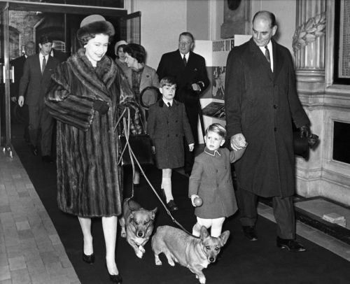 The Queen's only remaining corgi, who appeared in her 2012 James Bond Olympic sketch, has died just days before Her Majesty's 92nd birthday
