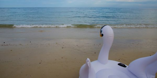 A mother and her 7-year-old son were left stranded in the Gulf of Mexico after their giant inflatable swan drifted from shore