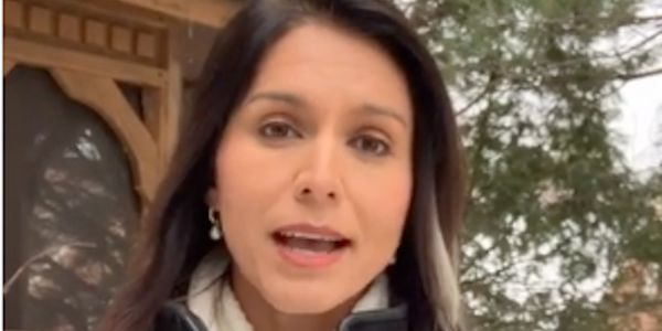 Tulsi Gabbard apologizes to LGBTQ community over past rhetoric, stances: 'I said and believed things that were wrong'