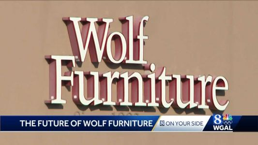 Wolf Furniture parent company reportedly considering sale, possible bankruptcy