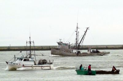 55 deaths in 15 years: Report highlights remarkable danger of commercial fishing in Canada