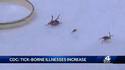 Tickborne illnesses on the rise: What you need to know