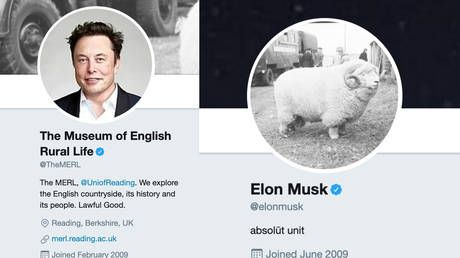 'I'm an absolute unit too': Musk revives viral 2018 ram meme in bizarre exchange with English Museum