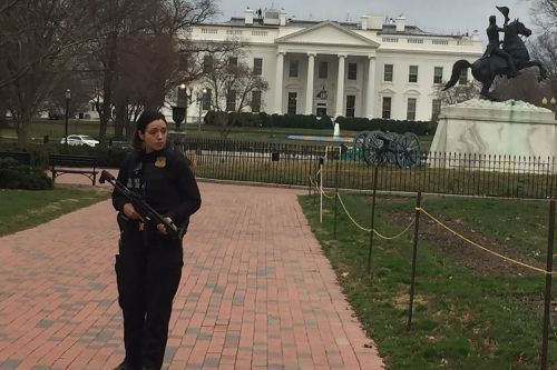 Car crashes into White House security barriers