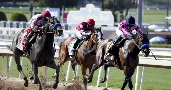 No positive tests under horse track rules limiting meds