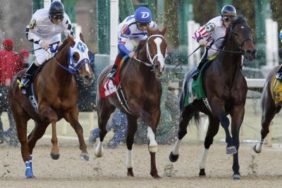 Oaklawn Park shows new wagering options for opening day